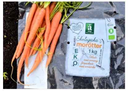 Using Bio-based Green PE to Produce Sustainable Film Packaging for Fresh Vegetables