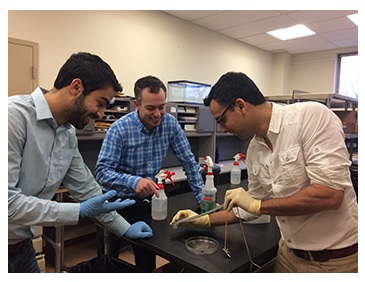 "Navid Kazem, Jonathan Malen, and Carmel Majidi Demonstrate the Elasticity of a Strip of ""Thubber"""